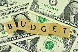 wellness plan budget