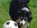Keiko soccer 2
